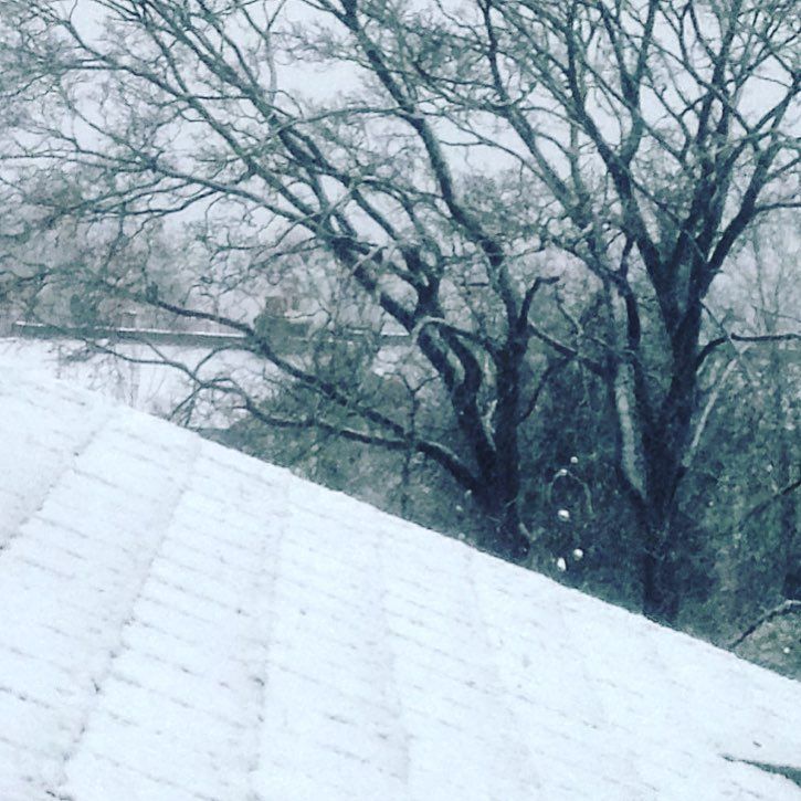 Rooftop viewyepits snowing snowinginlondon 10thdecember trees